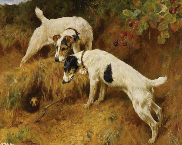 Painting - No One Home by Arthur Wardle