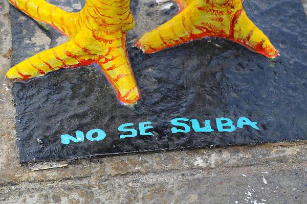 Photograph - No Se Suba by Dart and Suze Humeston