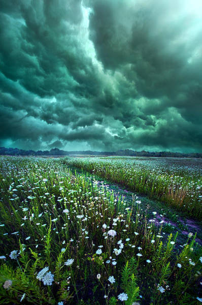 Summer Storm Photograph - No Way Out by Phil Koch
