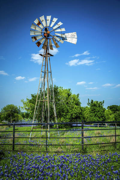 Texas Photograph - No Wind Today by Tom Weisbrook