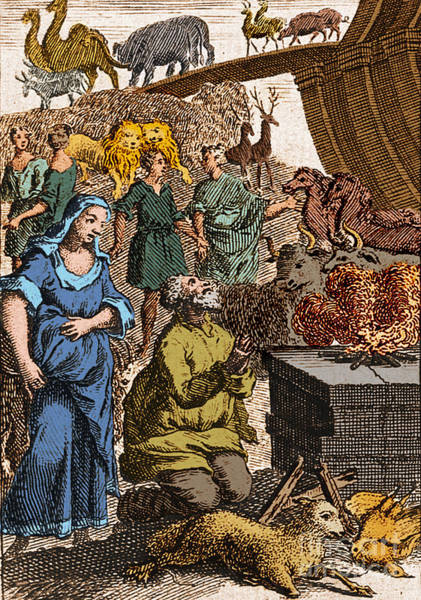 Wall Art - Photograph - Noah Preparing First Sacrifice After by Science Source