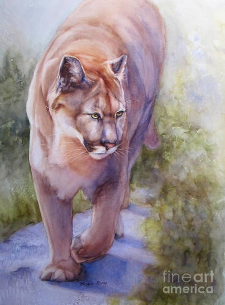 Mountain Lion Painting - Noble Cougar by Bonnie Rinier