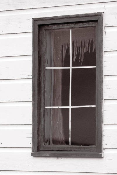 Monotone Photograph - Nobody Home by Susan Capuano