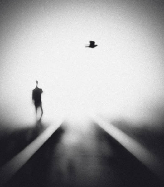 Wall Art - Photograph - Nocturne by Hengki Lee