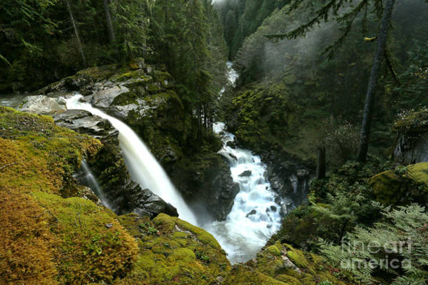 Photograph - Noooksack Falls Canyon by Adam Jewell