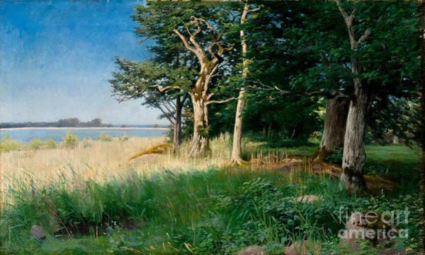 Painting - Nordic Coastal Landscape by Celestial Images