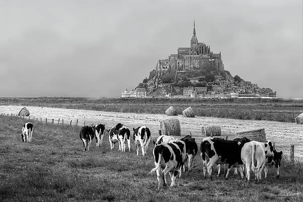 Photograph - Normandy by Peter Kennett