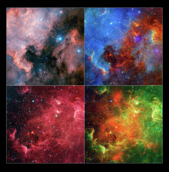 Wall Art - Photograph - North America Nebula   by Jennifer Rondinelli Reilly - Fine Art Photography