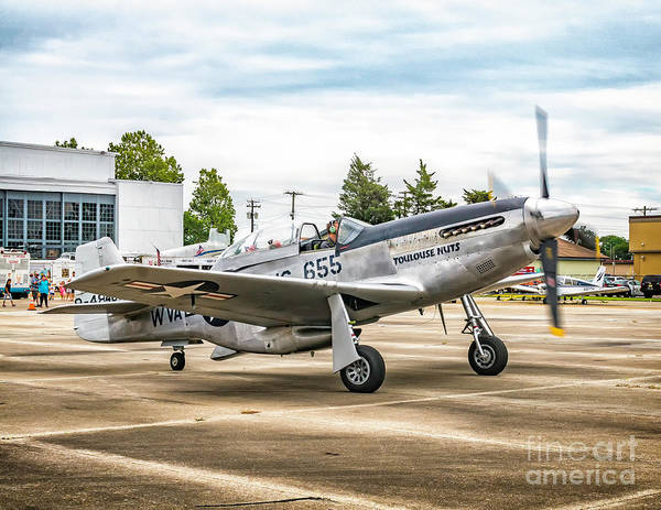 Photograph - North American Tp-51c Mustang  by Nick Zelinsky
