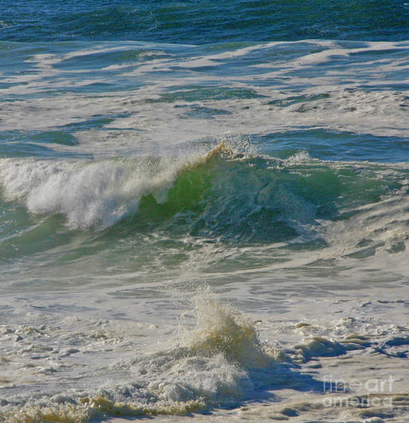 Photograph - North Beach Day by Joyce Creswell