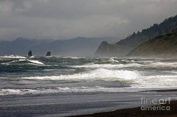 Photograph - North California Coast by Cindy Murphy - NightVisions