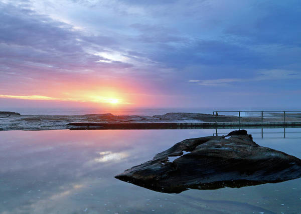 Photograph - North Curl Curl Rock Pool by Nicholas Blackwell