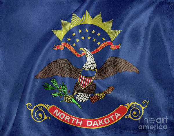 North Dakota Photograph - North Dakota Flag by Jon Neidert