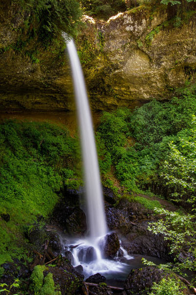 Photograph - North Falls Oregon by Michael Ash