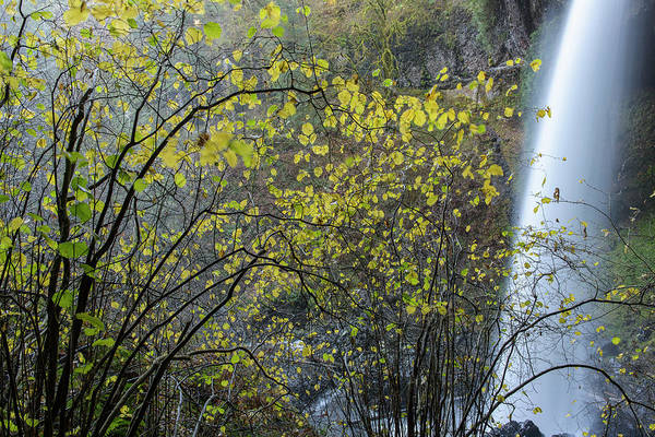 Photograph - North Falls With Yellow Leaves by Robert Potts