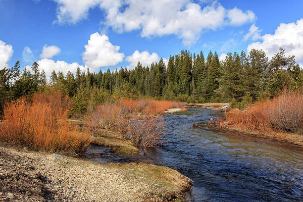 Photograph - North Fork Deer Creek by James Eddy