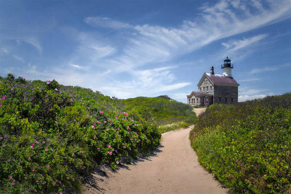 Photograph - North Light by Robin-Lee Vieira