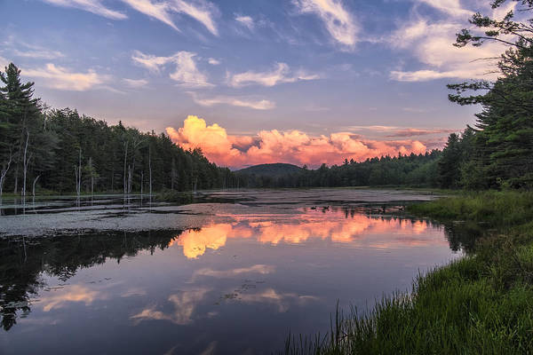 Photograph - North Pond Sunset by Tom Singleton