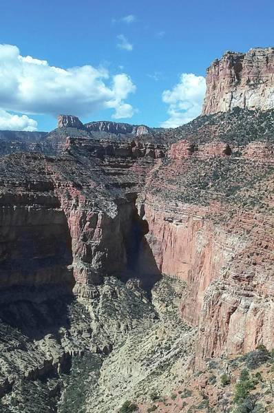Photograph - North Rim Of Grand Canyon by NaturesPix