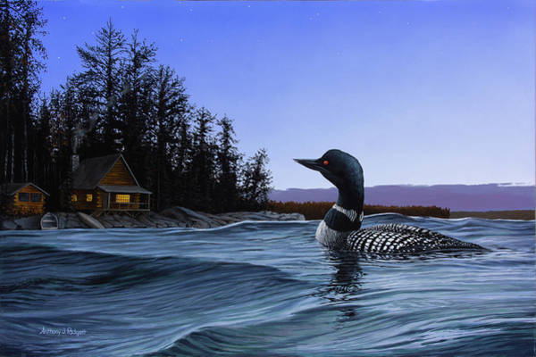 Loon Painting - North Shore Lodge by Anthony J Padgett