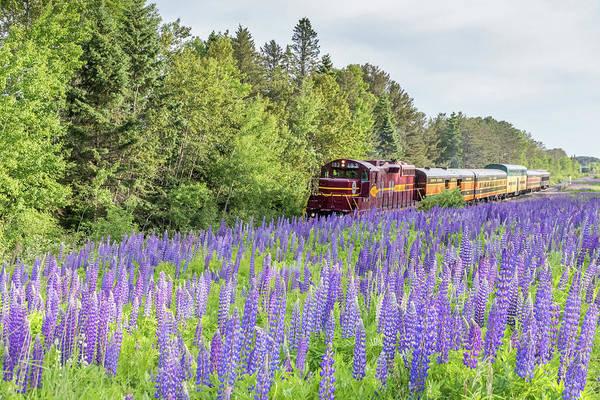 Wall Art - Photograph - North Shore Scenic Railroad by Mary Amerman