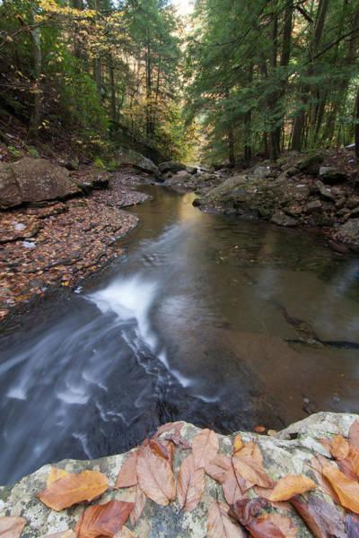 Photograph - North Suck Creek Fall by Paul Rebmann