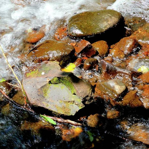 Photograph - North Yamhill River Rocks by Jerry Sodorff