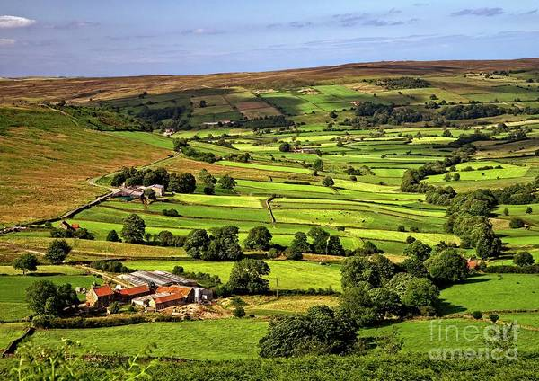 Photograph - North York Moors Countryside by Martyn Arnold