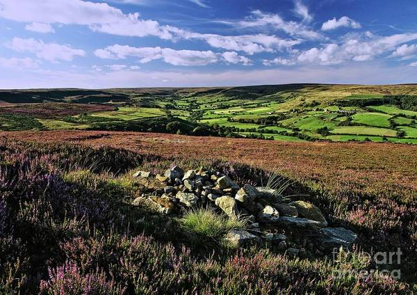 Photograph - North York Moors Landscape by Martyn Arnold