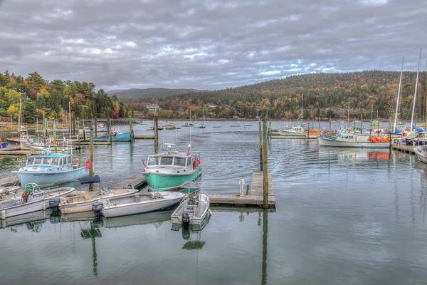 Photograph - Northeast Harbor by Paul Schultz