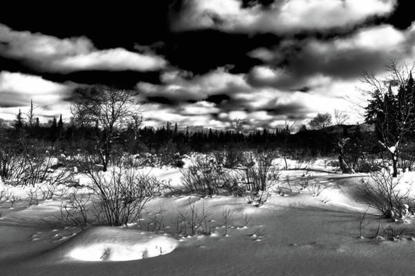 Photograph - Northeast Winter Highlights by David Patterson