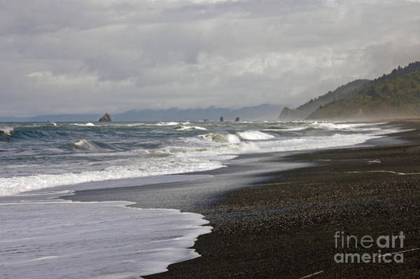 Photograph - Northern Ca Coast by Cindy Murphy - NightVisions