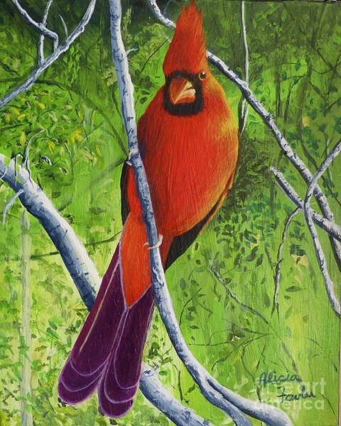 Painting - Northern Cardinal 1 by Alicia Fowler