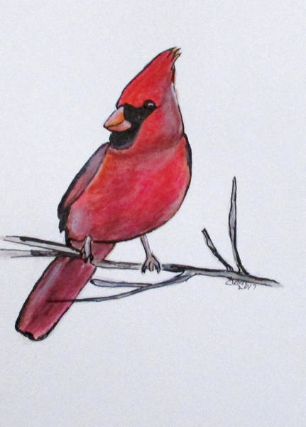 Painting - Northern Cardinal by Clyde J Kell