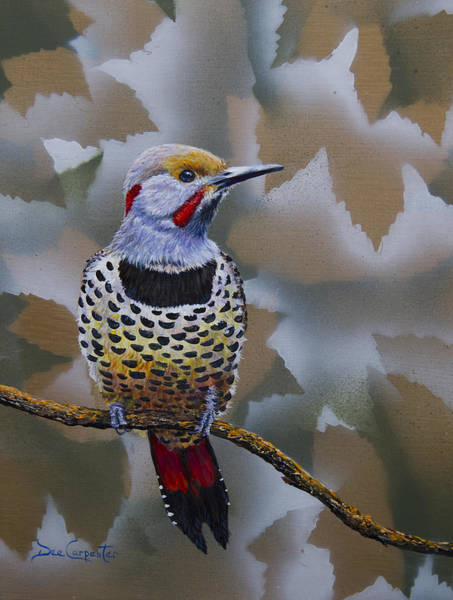 Northern Flicker Painting - Northern Flicker by Dee Carpenter