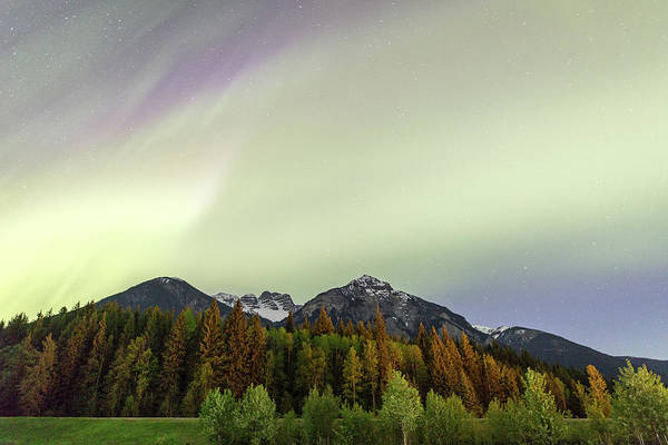 Photograph - Northern Lights Over Overlander Mountain by M C Hood