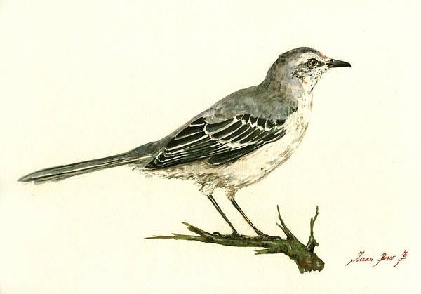 Small Birds Painting - Northern Mockingbird by Juan  Bosco