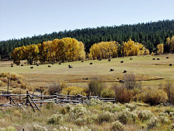 Chama Photograph - Northern New Mexico Autumn by Troy Montemayor