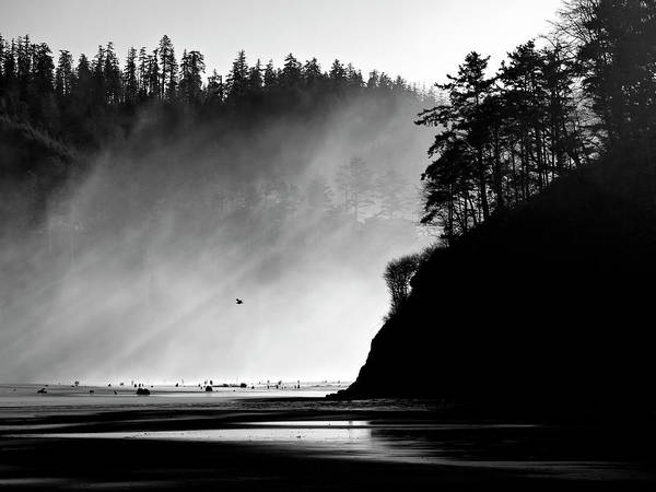 Oregon Coast Wall Art - Photograph - Northern Oregon Coast by Carol Leigh