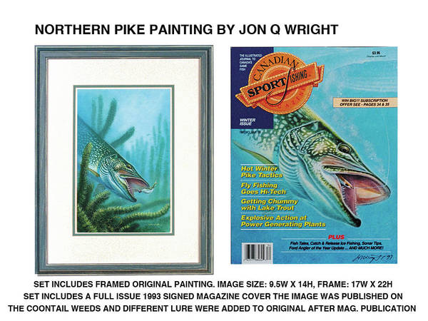 Freshwater Wall Art - Painting - Northern Pike Original by JQ Licensing