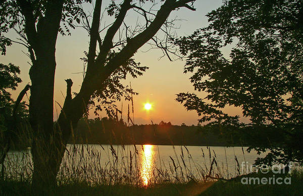 Photograph - Northern Wisconsin Sunrise by Kevin McCarthy