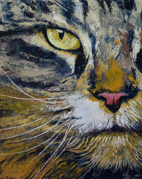 Looking Up Painting - Norwegian Forest Cat by Michael Creese