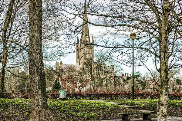 Photograph - Norwich Cathedral by Makk