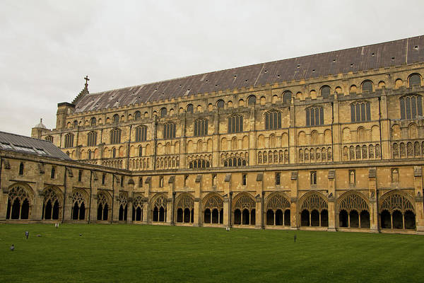 Photograph - Norwich Cathedral Quadrangle by Tony Murtagh