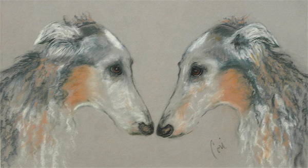 Russian Wolfhound Drawing - Nose To Nose by Cori Solomon