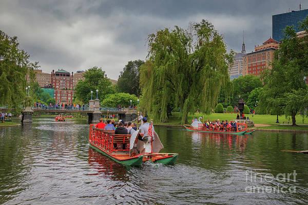 Swan Boats Photograph - Nostalgic Boston Swan Boats by Elizabeth Dow