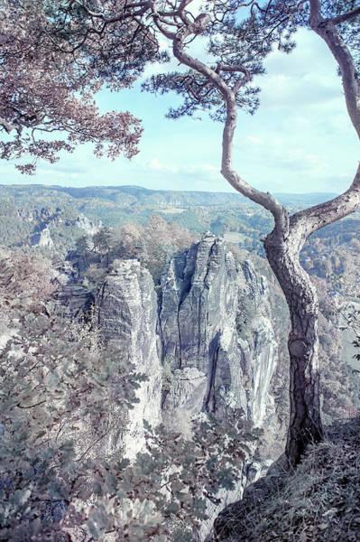 Photograph - Nostalgic Romantic. Saxon Switzerland by Jenny Rainbow