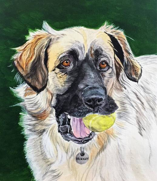 Painting - Not Too Old To Play by Sonja Jones