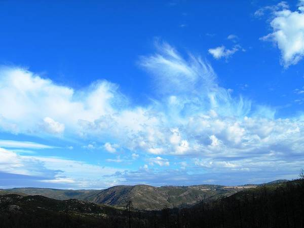 Wall Art - Photograph - Nothing But Blue Skies by Donna Zoll