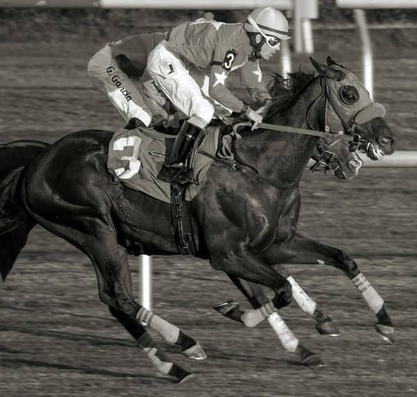 Jockey Photograph - Nothing Can Stop Us Today by Betsy Knapp